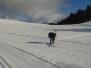 2016 Jan. 23 - XC Skiing
