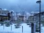 2015 Feb. 8 - Snow in Lausanne